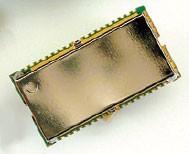 Prototypage rapide à 32 bits ARM7 (Sceptre)